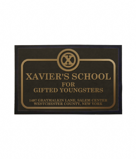 Xaviers School for Gifted Youngsters Welcome Mat Doormat Based on Marvels X Men